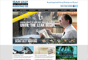 Sean Lilly Roofing